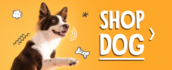 shop dog products on petflow.com